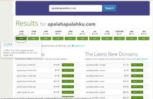 add domain $299 murah