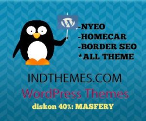 NYEO WORDPRESS THEME DISKON