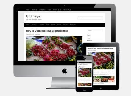 Ultimage theme v3 wp theme diskon SS-Responsive