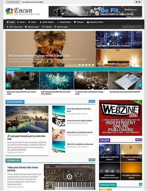 Diskon Encun brilliant magazine wordpress theme