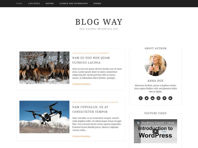 Blog Way Theme WordPress Free